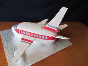 airplane 014