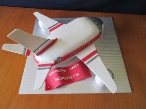 airplane 015