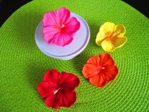 hibiscus flowers 153