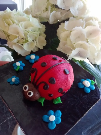 Ladybug Cake! (pssst...she was delicious!)